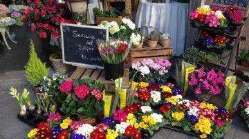 Casla floristas tienda exterior